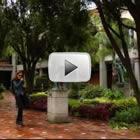 Los 5 videos más vistos en el canal de YouTube de la UDLAP