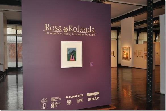 finaliza Rosa Rolanda UDLAP