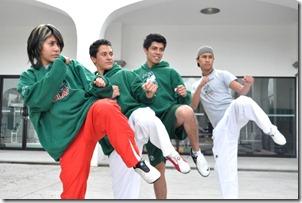 taekwondo udlap