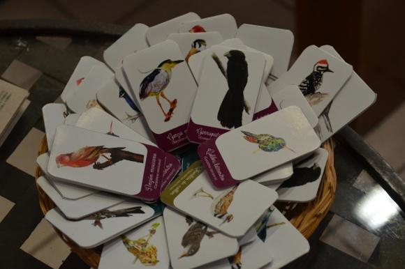 50% de las especies de aves en México se pueden encontrar en Puebla