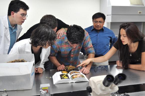 Programas académicos de la UDLAP en las primeras posiciones de acuerdo a rankings nacionales