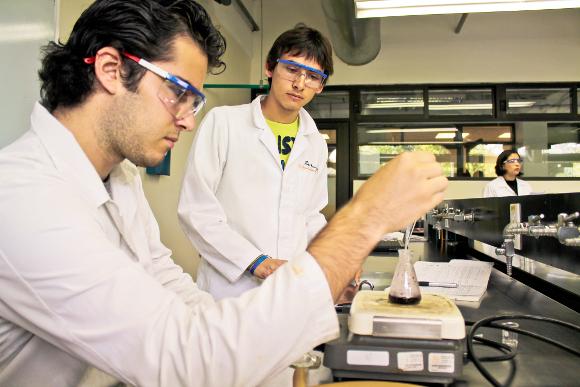 Efecto antifúngico de aceites esenciales de clavo y mostaza en fase vapor sobre Botrytis cinerea en fresa