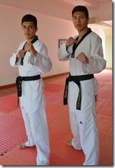 taekwondoudlap
