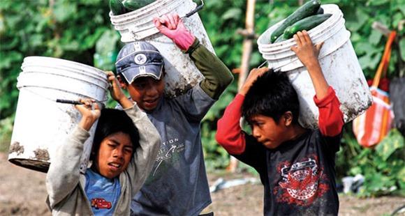 niños-mexicanos-trabajando