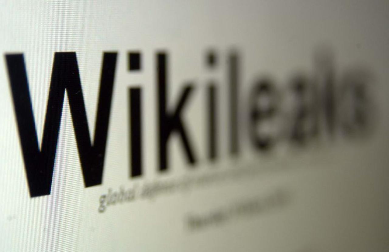 Wikileaks, Julian Assange y Anonymous.