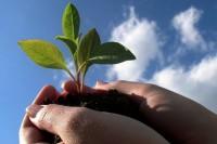Emprendimiento: cómo fomentar este buen hábito