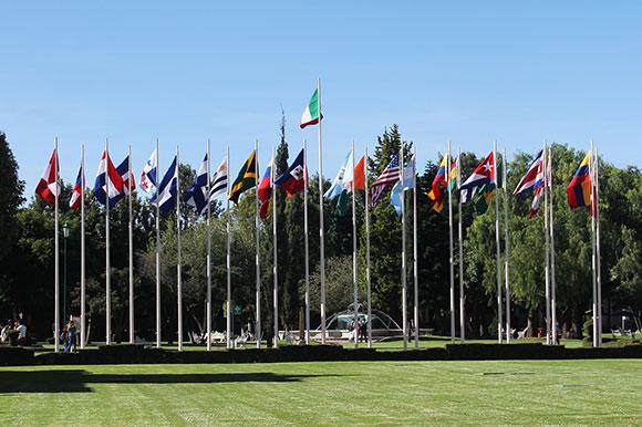 banderas-1