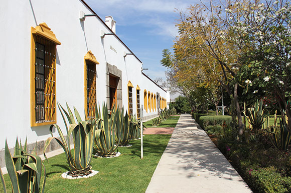 rectoria