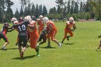 La Tribu Juvenil Azteca quiere amansar a los Tigres UMAD en la LINFA