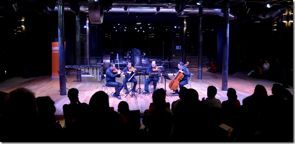 casa de musica de viena udlap  (2)