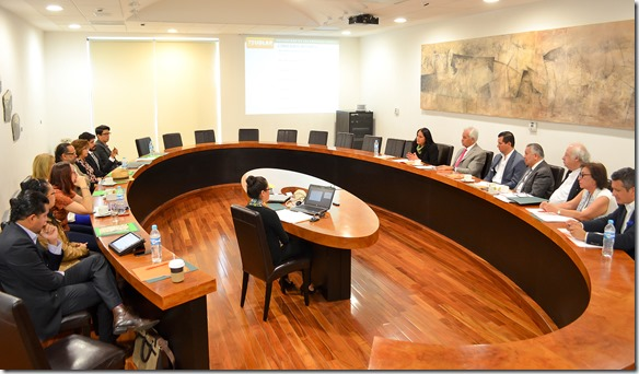 consejos consultivo humanidades udlap  (2)