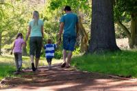 Autorregulación y padres de familia