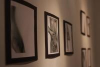 Regina Santaella presenta exposición en Luz de la Nevera