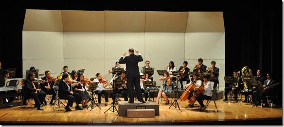 symphonia udlap  (1)