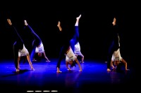 Danza UDLAP 2015