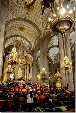 concierto catedral (2)