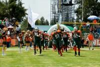 La Tribu Verde despintó las rayas del Tigre