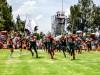 La Tribu Verde viajará a Monterrey, a la caza del Tigre