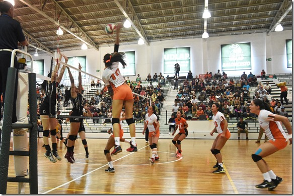 campeones voleibol conadeip udlap (3)