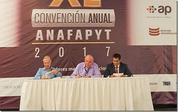 convenio udlap anafapyt (1)