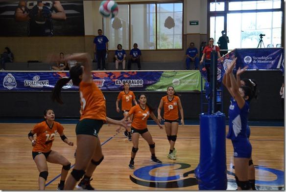 atecas voleibol udlap (2)