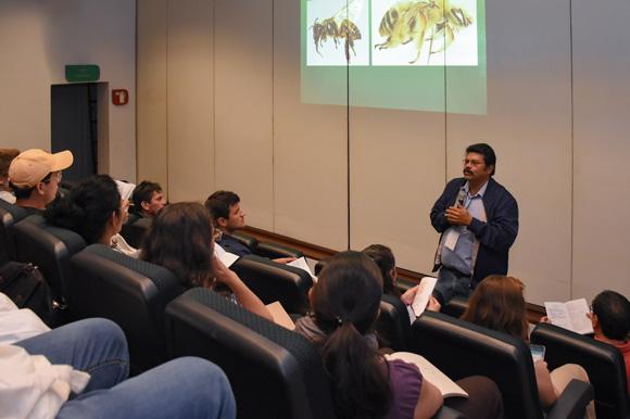 XI Congreso Mesoamericano de Abejas Nativas
